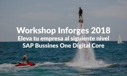 Workshop Inforges 2018