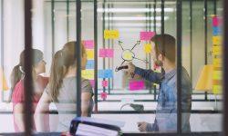 Ecosistema digital para la productividad y trabajo en equipo
