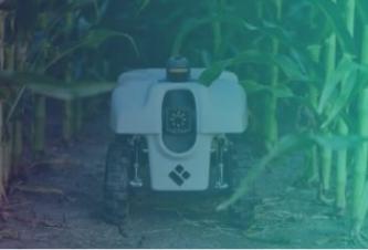 Informe sobre el sector agroalimentario – Ya en el Club de Innovación Digital